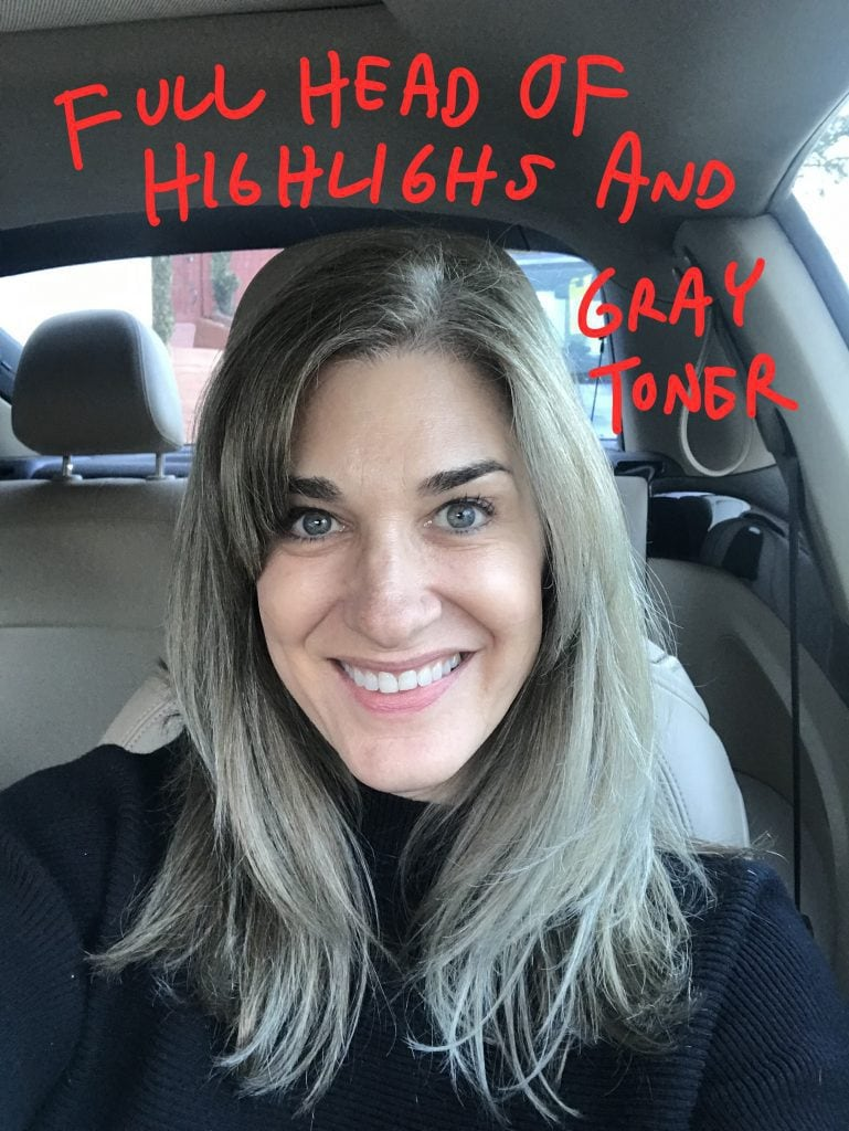 Full Head of Highlights and Gray Toner