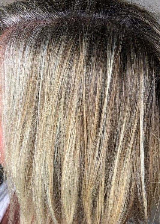 A Glossary Of Gray Hair Transition Terms Katie Goes